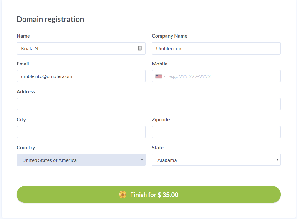 3-Registering-a-domain.PNG